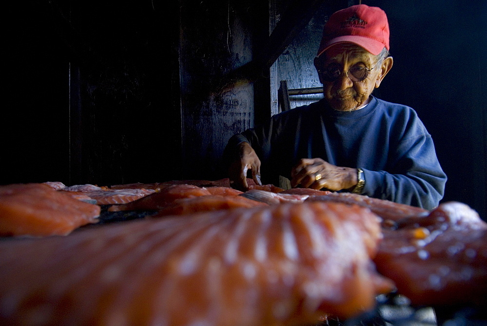 Oct 7, 2008 Mt Vernon, Washington Filletting and smoking salmon with tribal member Mike Cladoosby who has been fishing and preparing fish this way for over 60 yrs, United States of America