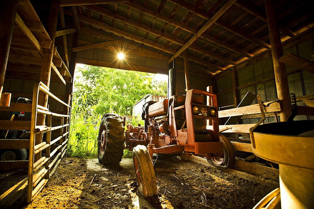 A old tractor sits in a barn.
