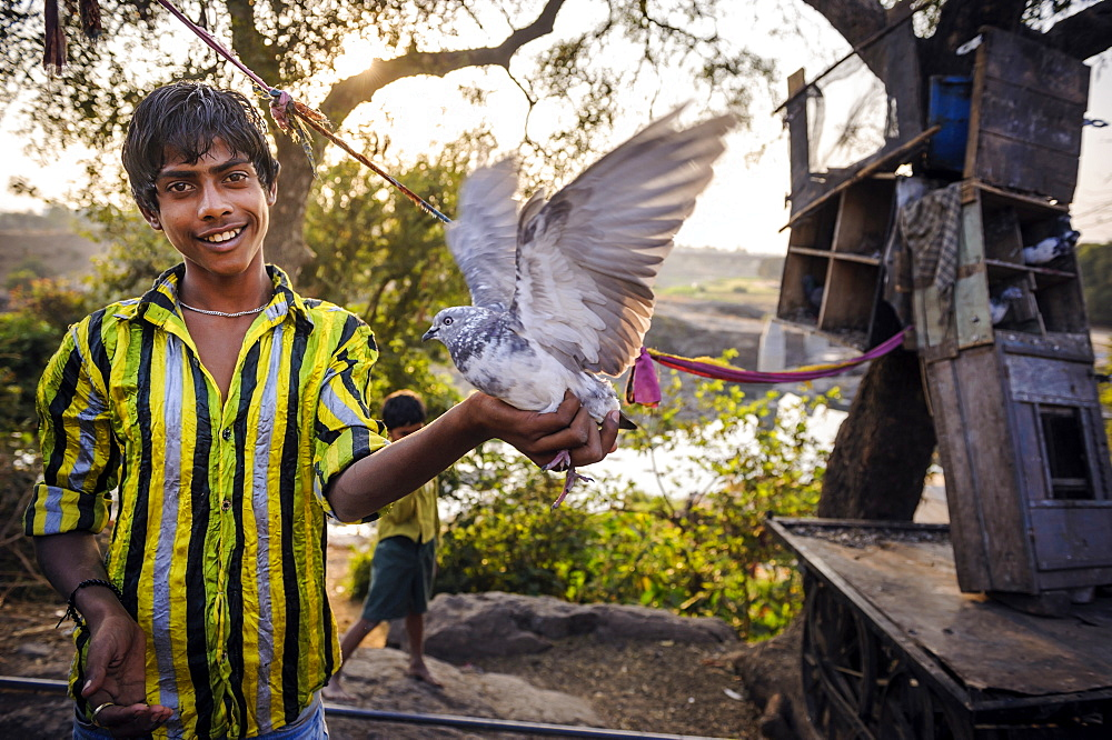 A boy showing his pigeon in a village, Maharashtra, India.