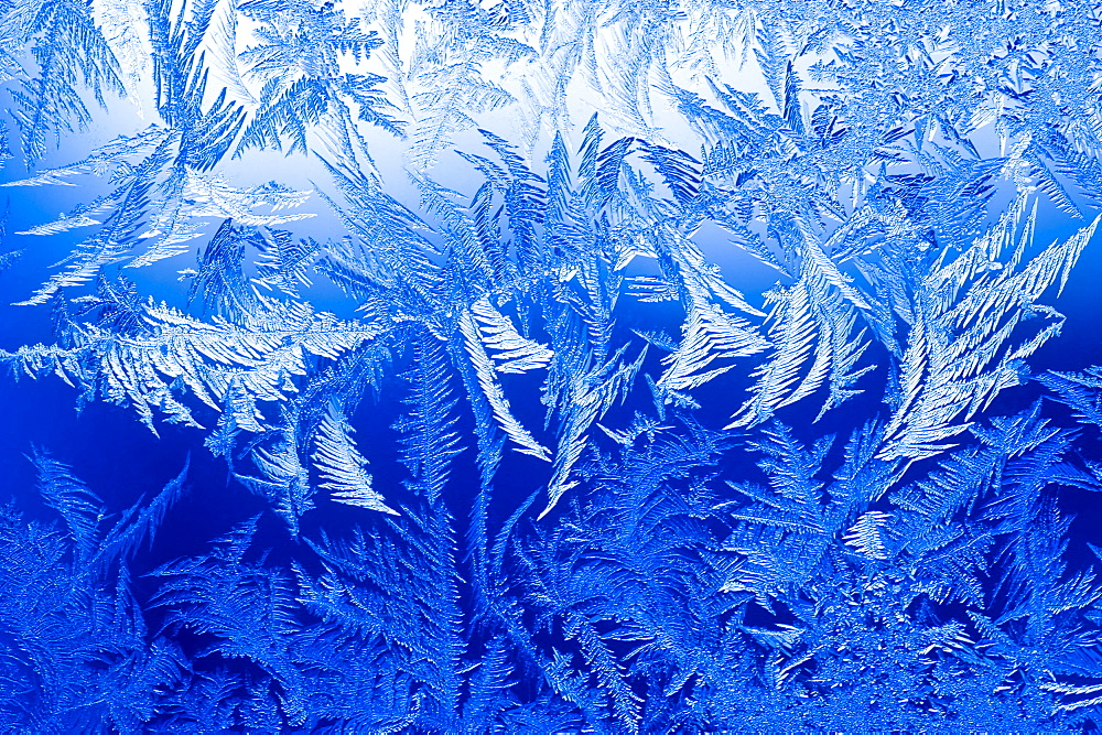 Ice crystals form on a window during sub zero temperatures on December 14, 2008 in Fort Collins, Colorado.