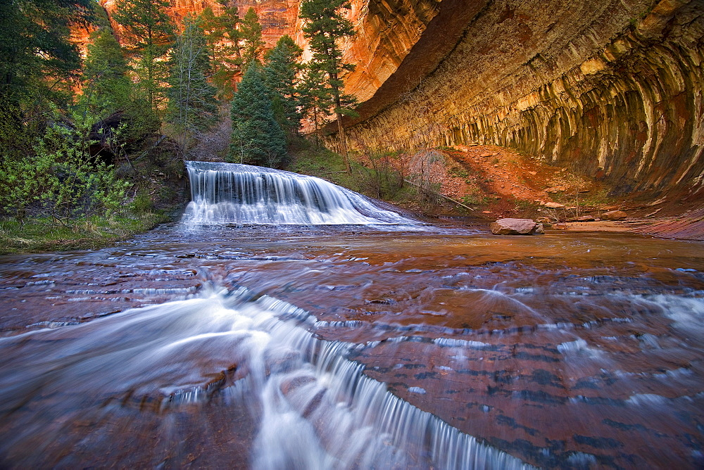 Waterfall in sandstone canyon, Zion National Park, Utah.