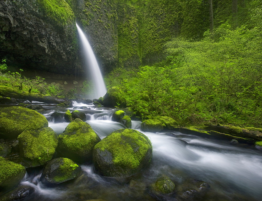 Large waterfall in the heart of Oregon's Columbia Gorge.
