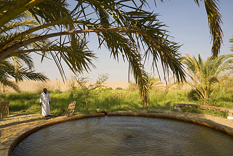 Man from El-Siwa stands near a warm springs in Egypt's Great Sand Sea