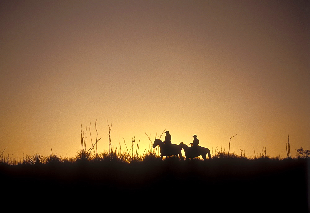 Horseback riders silhouetted against the setting sun, West Texas.