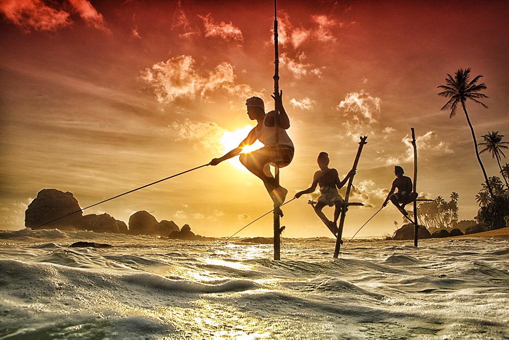 Stilt fishermen, Sri Lanka, traditional stilt fisherman at Kogalla, Sri Lanka, Sri Lankan stilt fishing