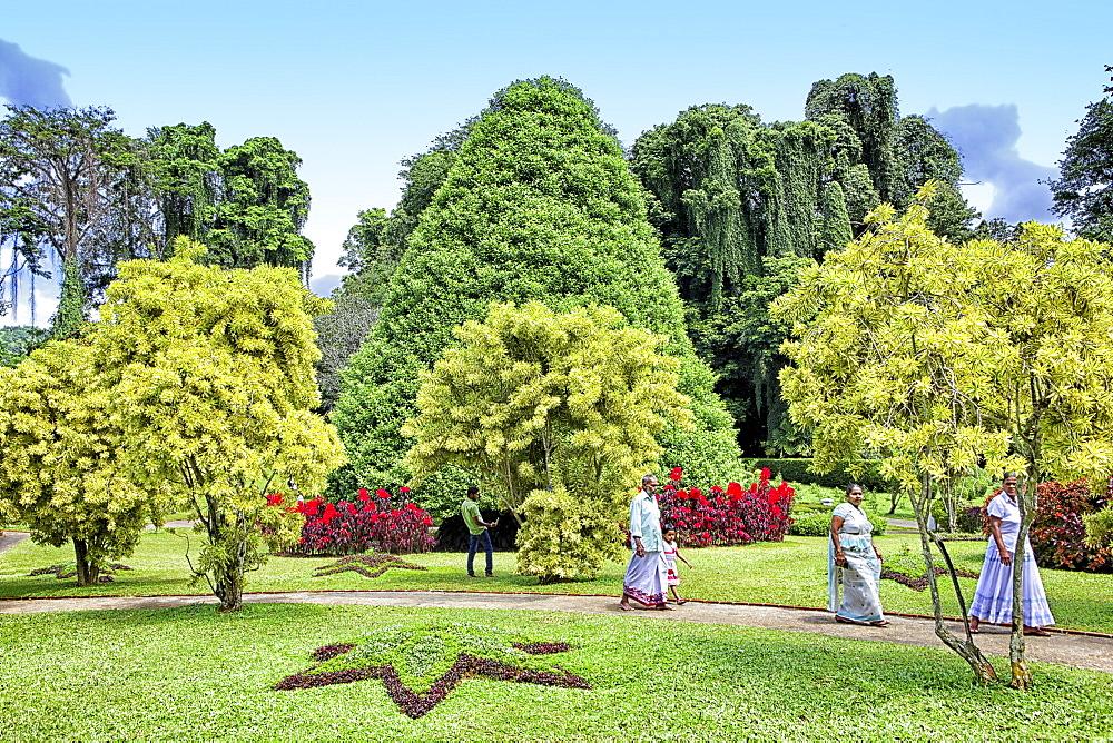 Flower garden in Peradeniya Botanic Gardens, Kandy, Sri Lanka, Asia
