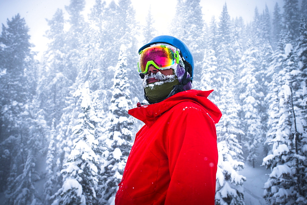 A snowboarder stops for a minute in a snow covered forest in Jackson Hole, Wyoming.