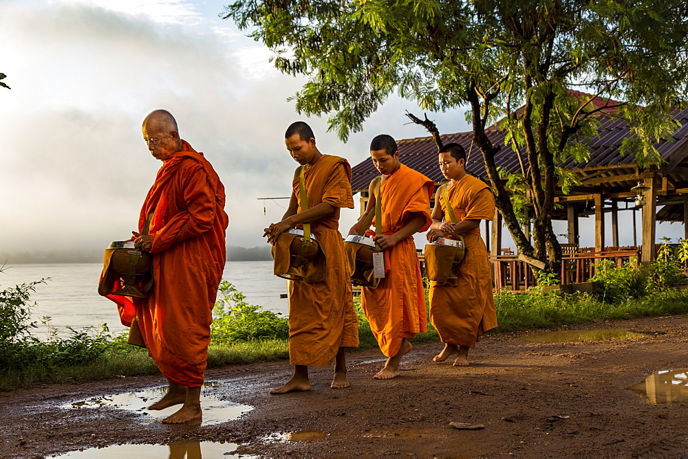 Buddhist Monks during Morning Alms Giving on Don Khong Island in Southern Laos