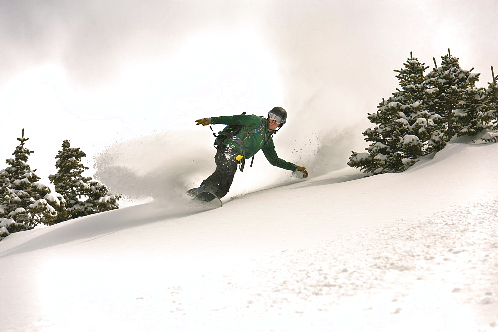 A Snowboarder Riding Through Deep Powder Of Silverton Mountain, Colorado
