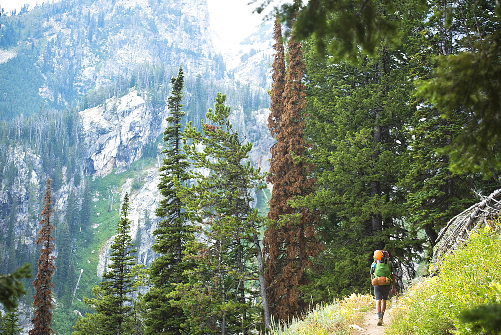 A Backpacker Hiking At The Grand Teton Mountains In Jackson Hole, Wyoming