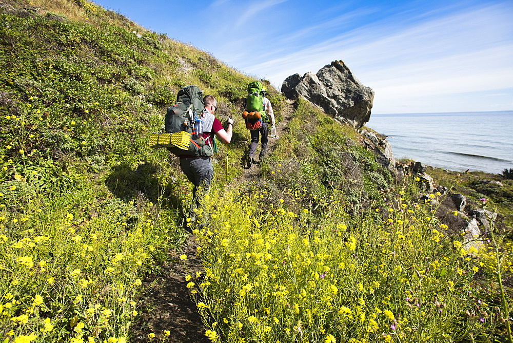 Two Backpacker Hiking At Lost Coast Near Shelter Cove