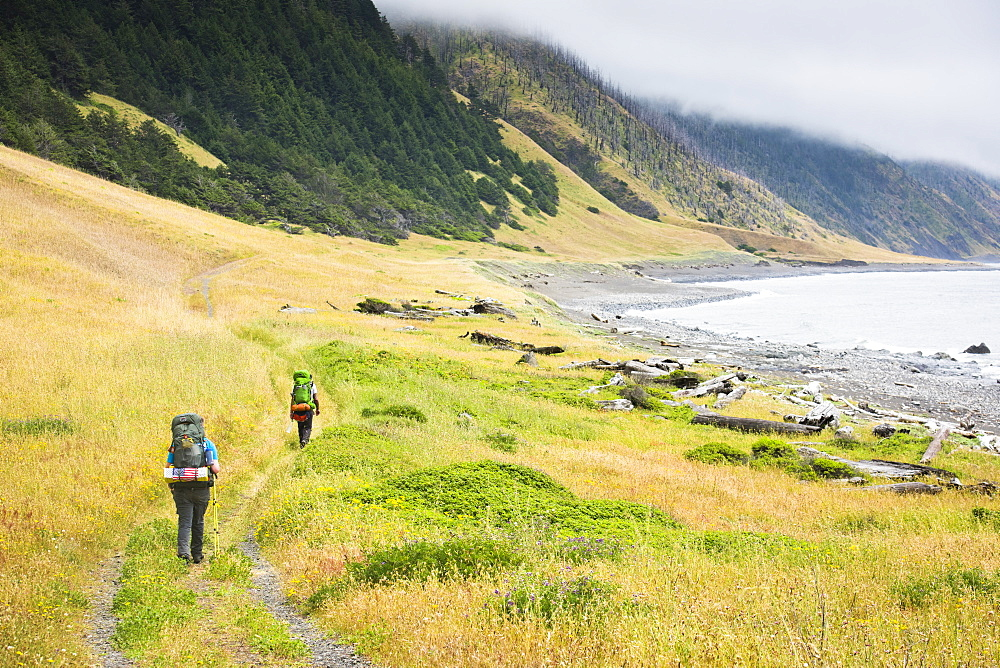 Two backpackers are seen on a trail near the ocean on the Lost Coast