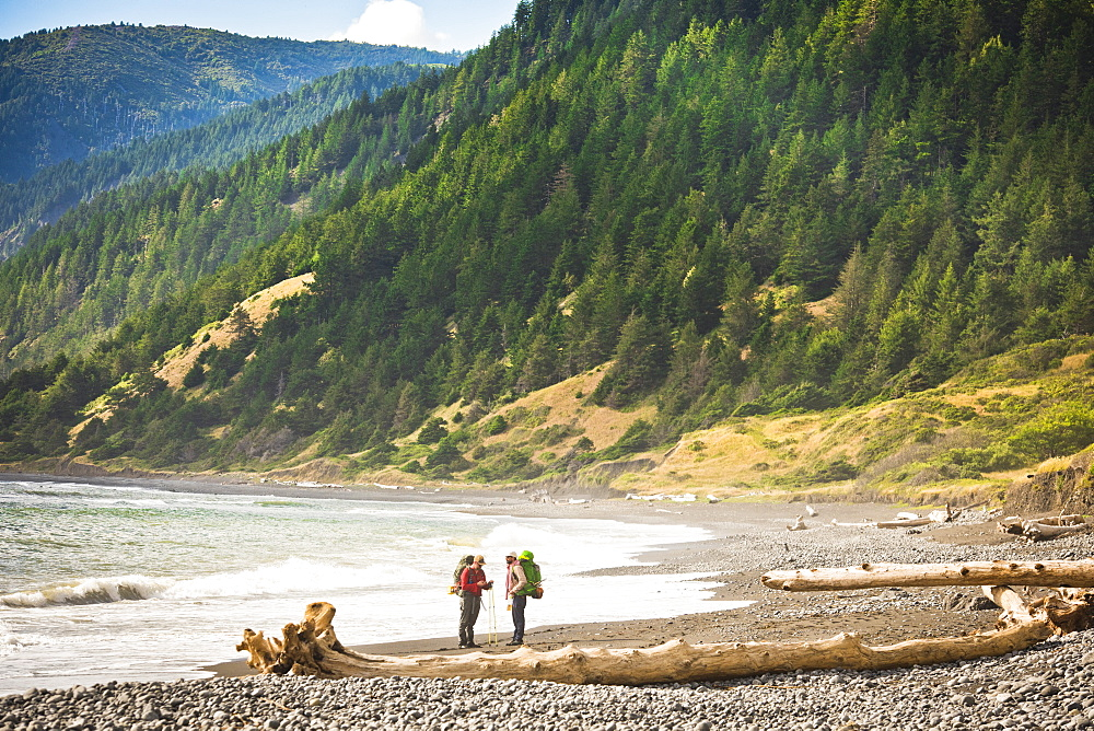 Two Hikers Taking A Break In The Lost Coast Near Shelter Cove, California