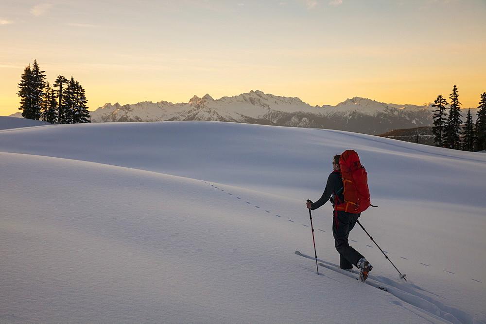 Skier Hiking Through The Fresh Snow In Garibaldi Provincial Park, Canada