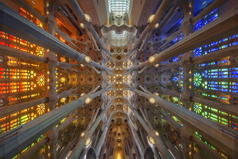 Ceiling Of Sagrada Familia In Barcelona, Spain