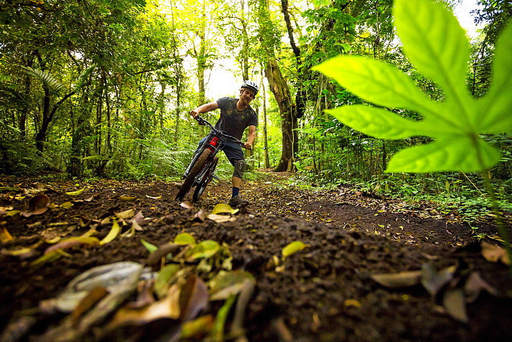 Man Mountain Biking In Tropical Forest Of Bali, Indonesia