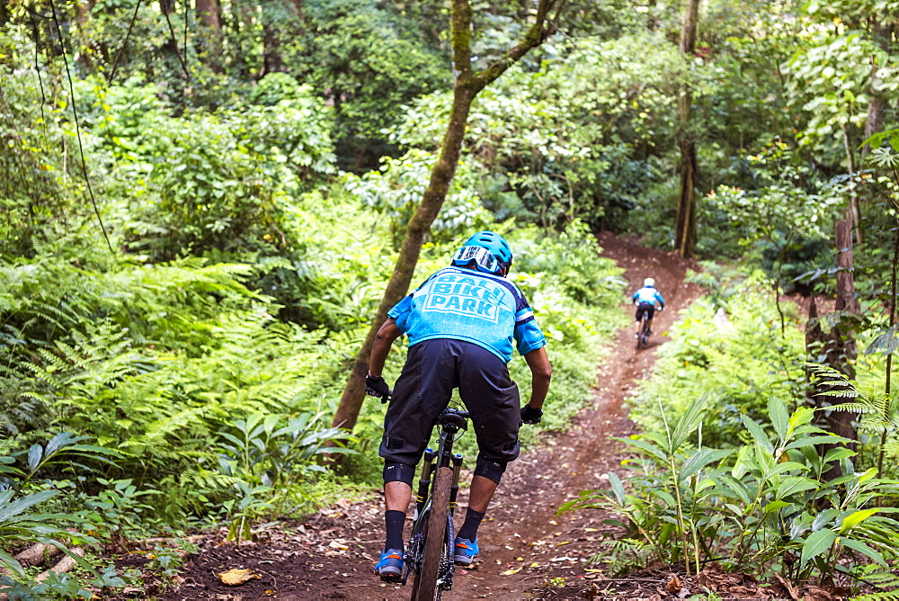 Mountain Biker Riding Through Dirt Track Of Rainforest In Bali, Indonesia