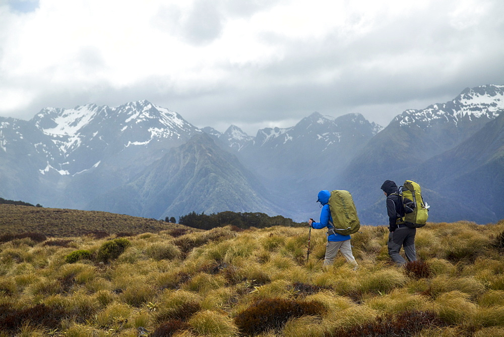 Hiking Along The Kepler Track In Fiordland National Park, New Zealand