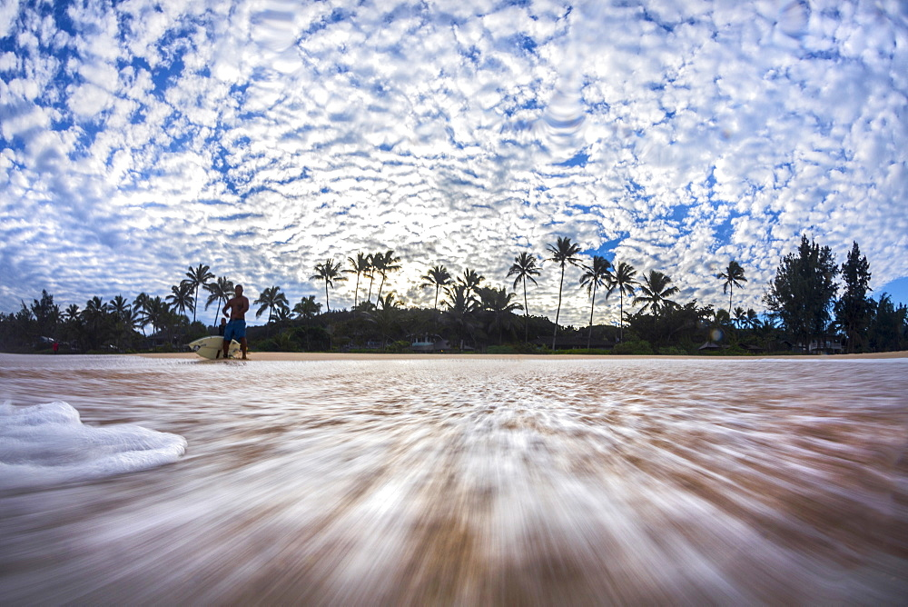Surfer and palm trees on beach, Oahu, Hawaii, USA