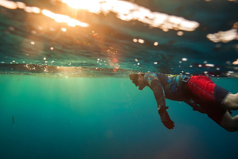 Bruce M snorkels off Roatan Island, Honduras.
