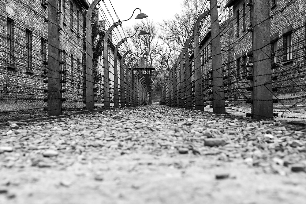 Barbed wire lines a corridor at the Auschwitz concentration camp in Oswiecim, Malopolskie Province, Poland