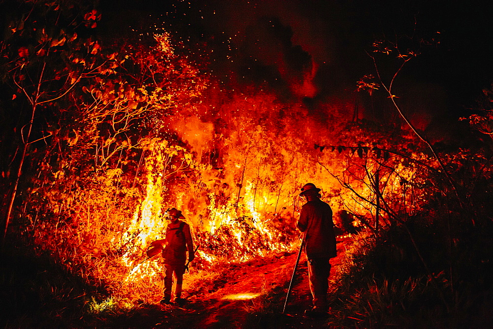 View of two firefighters during forest fire, Guanaba, Queensland, Australia
