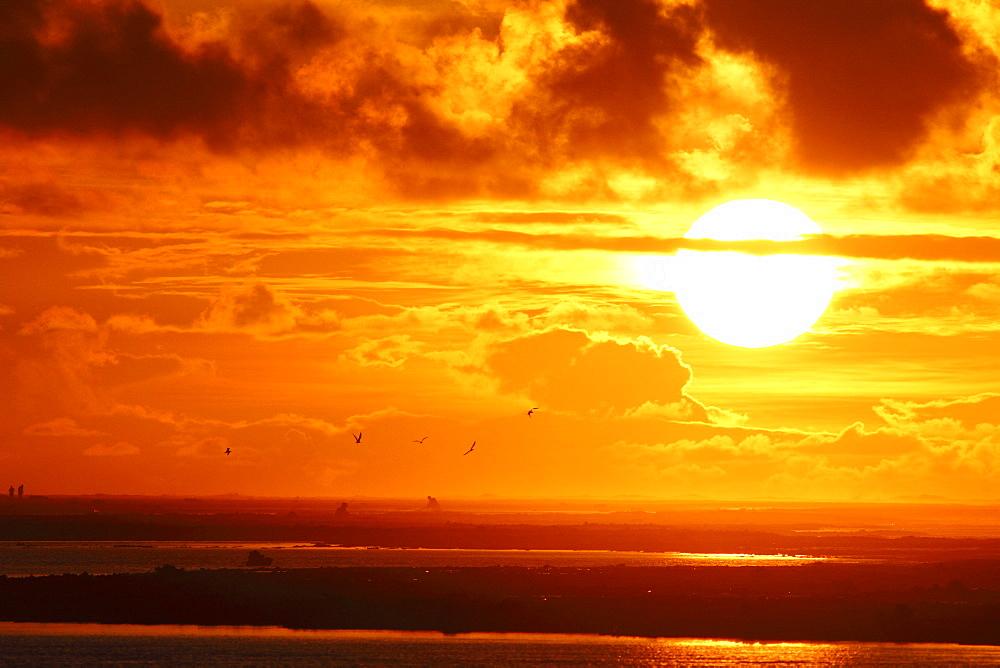 Sunset on reef, Rangiroa French Polynesia