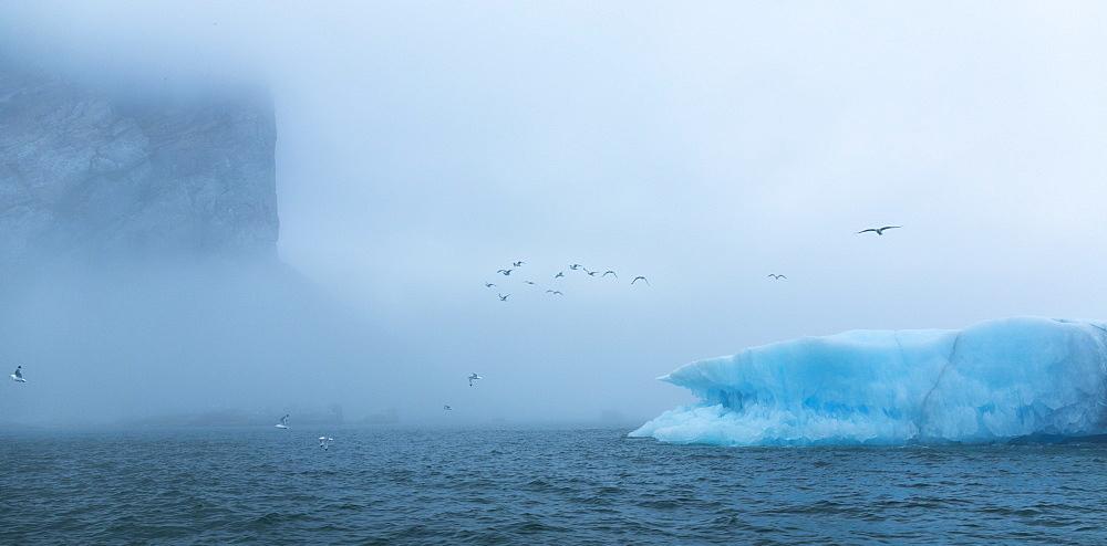Cliff and iceberg, Spitsbergen Svalbard - 860-284456