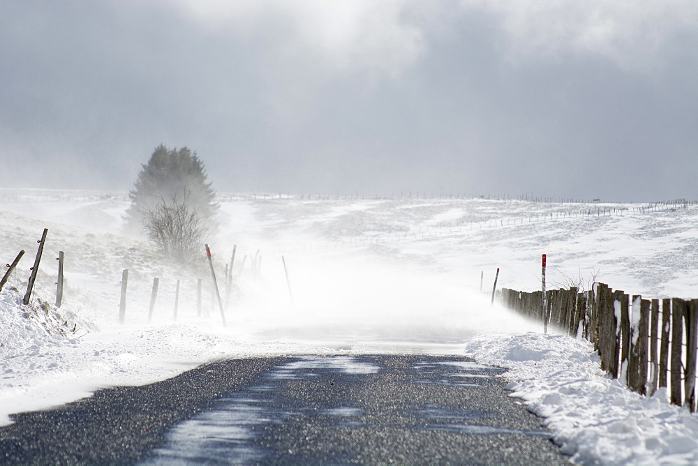 Snow drifts in winter, Massif du Sancy, Parc Naturel Regional des Volcans d'Auvergne , France