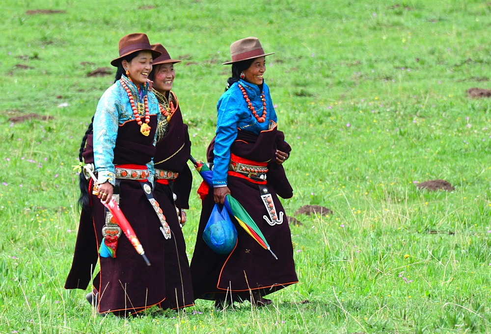 Equestrian Festival Lapste
