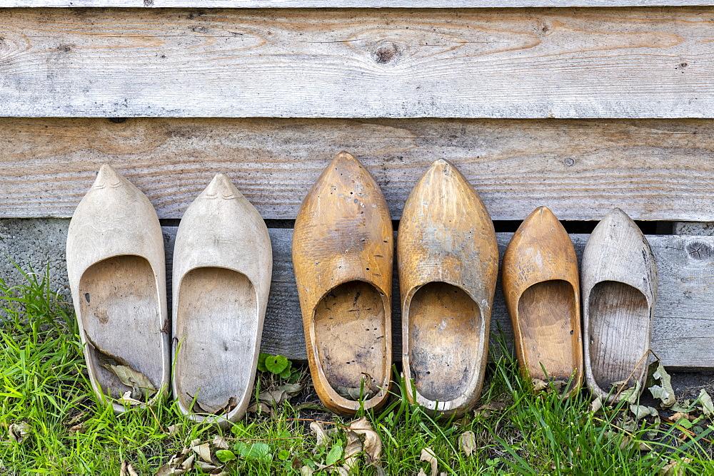 Decorative wooden clogs in a garden - 860-286975