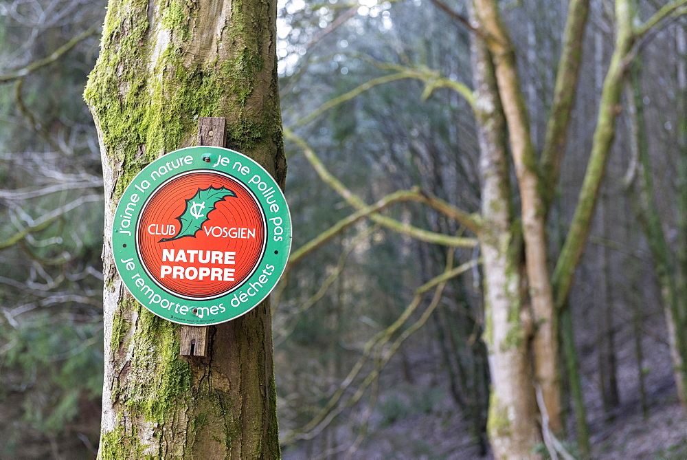 Panel of public awareness, respect for nature, in a Vosges forest, winter, Moselle, France