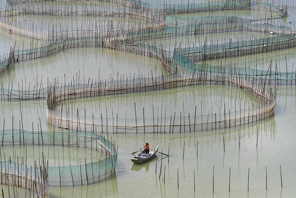Cages with nets for raising fish in open sea, Fish Farming, boat, Xiapu County, Fujiang Province, China