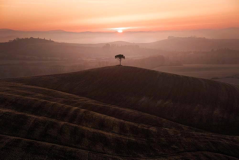 Hills of Tuscany, Siena, Tuscany, Italy