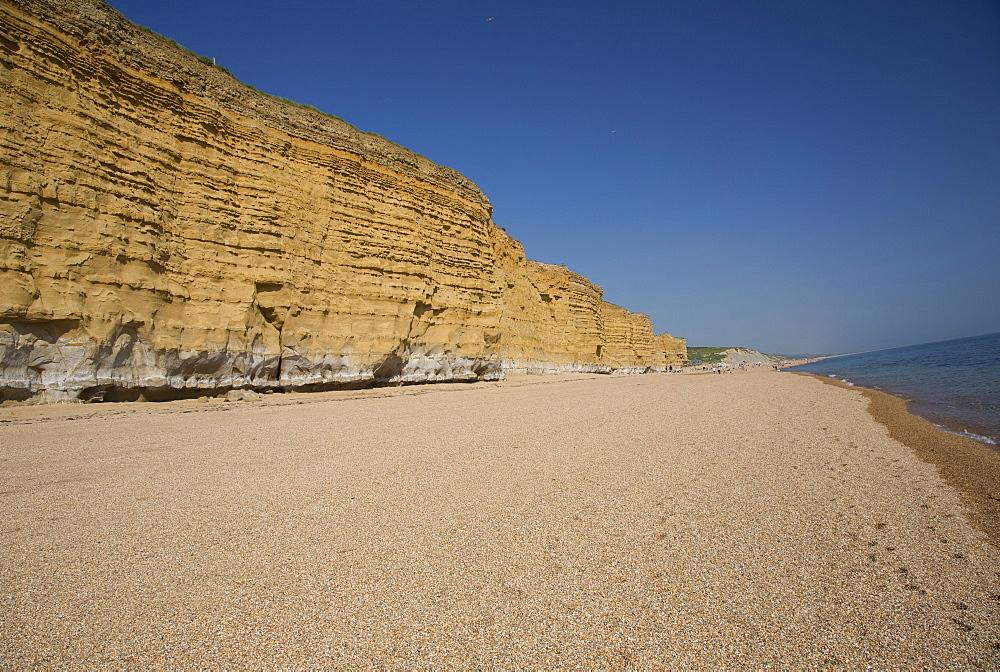 Iconic golden cliffs West Bay and Hive Beach Burton Bradstock Jurassic Coast Dorset UK