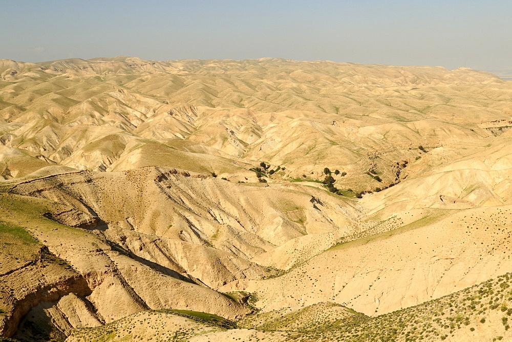 Wadi Qelt, Judean Desert in the Spring, Israel
