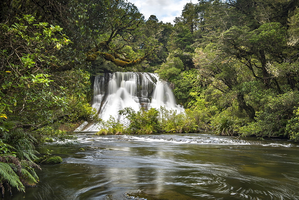 Aniwaniwa Falls, Te Urewera National Park, North Island, New Zealand