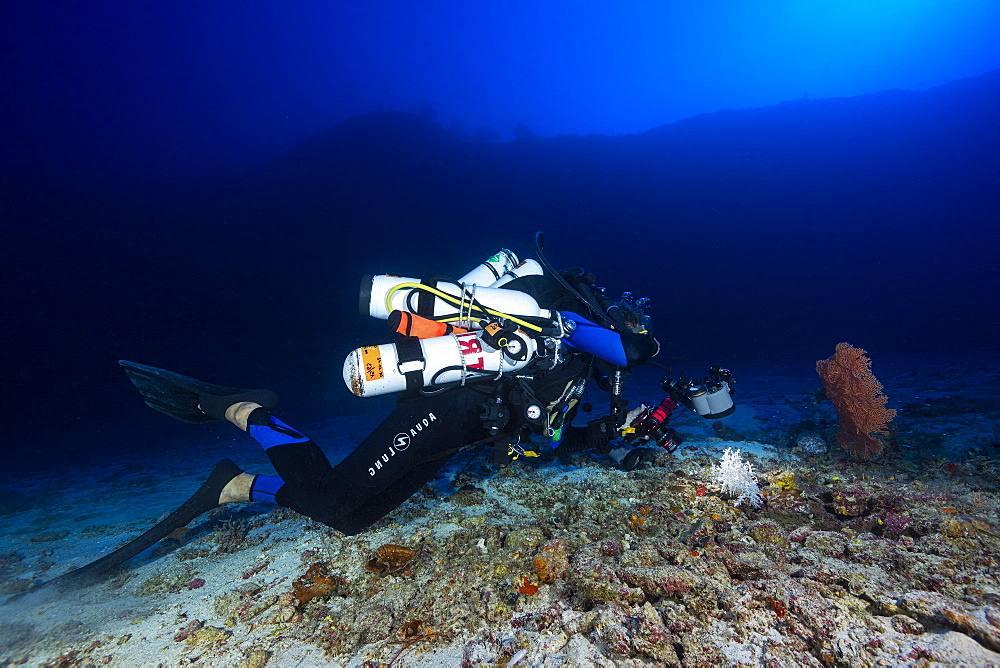 Divers photographer, Olivier in full session of photography on one of the many white corals which is between the second and the third reef wall to 80 meters deep, Mayotte