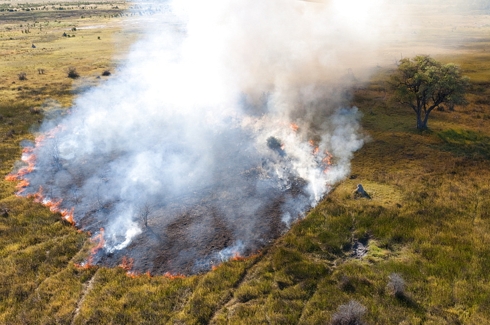 Aerial view of a bushfire in the Okavango Delta, Botswana.