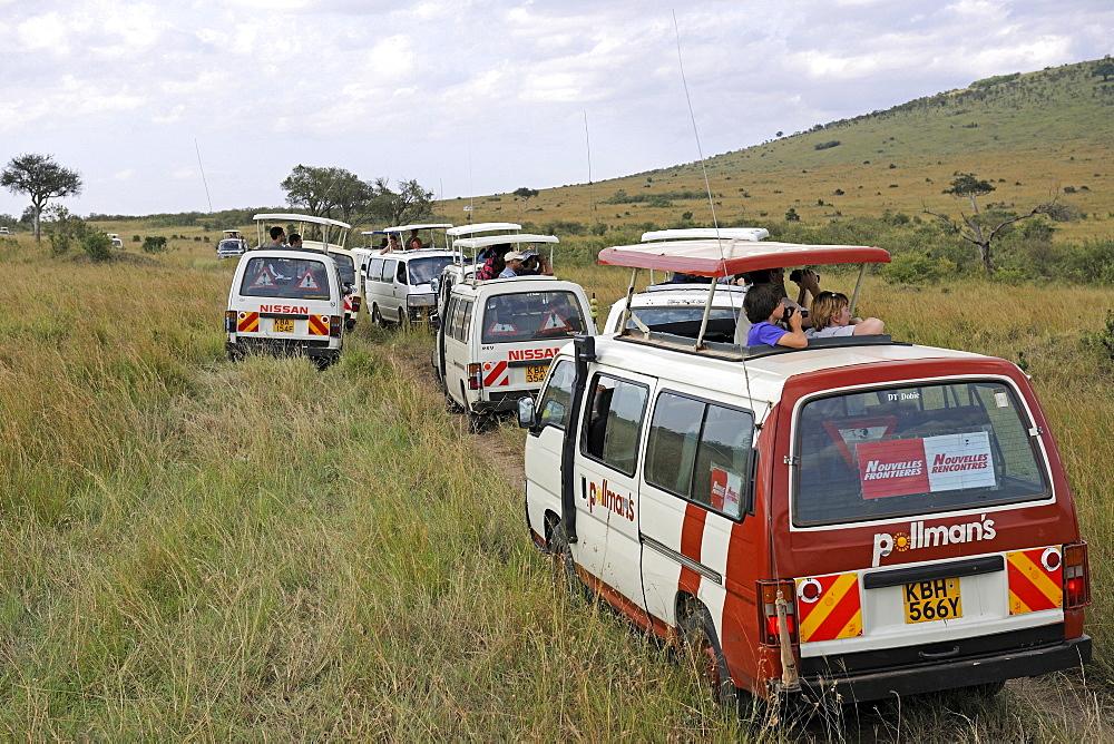 group of tourist buses safari buses Masai Mara National Park Kenya Africa Animals Nature Travel - 869-3243