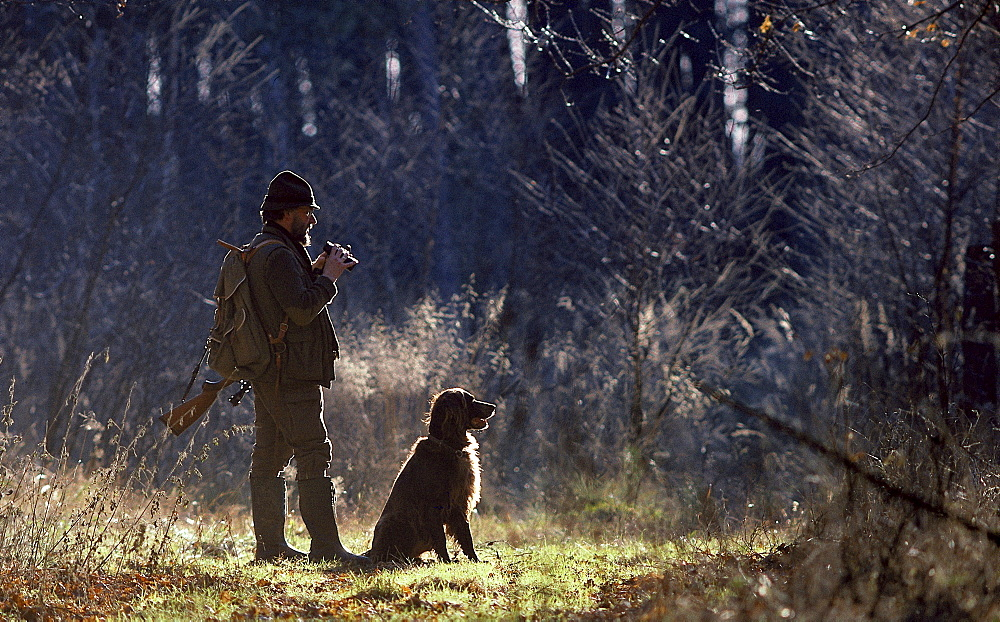 domesticated dog hunter with rifle and hunting dog in forest Germany