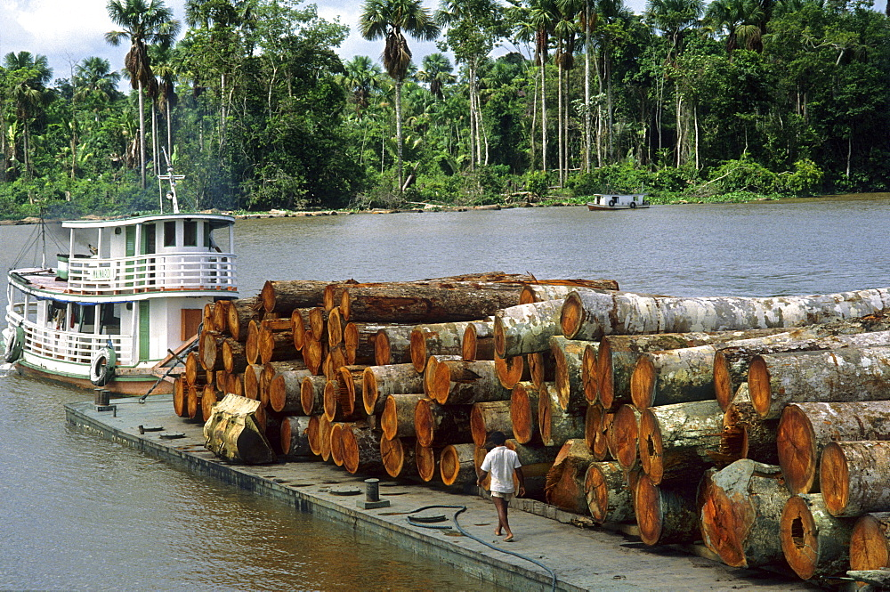 deforestation barge loaded with logs in Amazon estuary Marajo Island Para Brazil South America