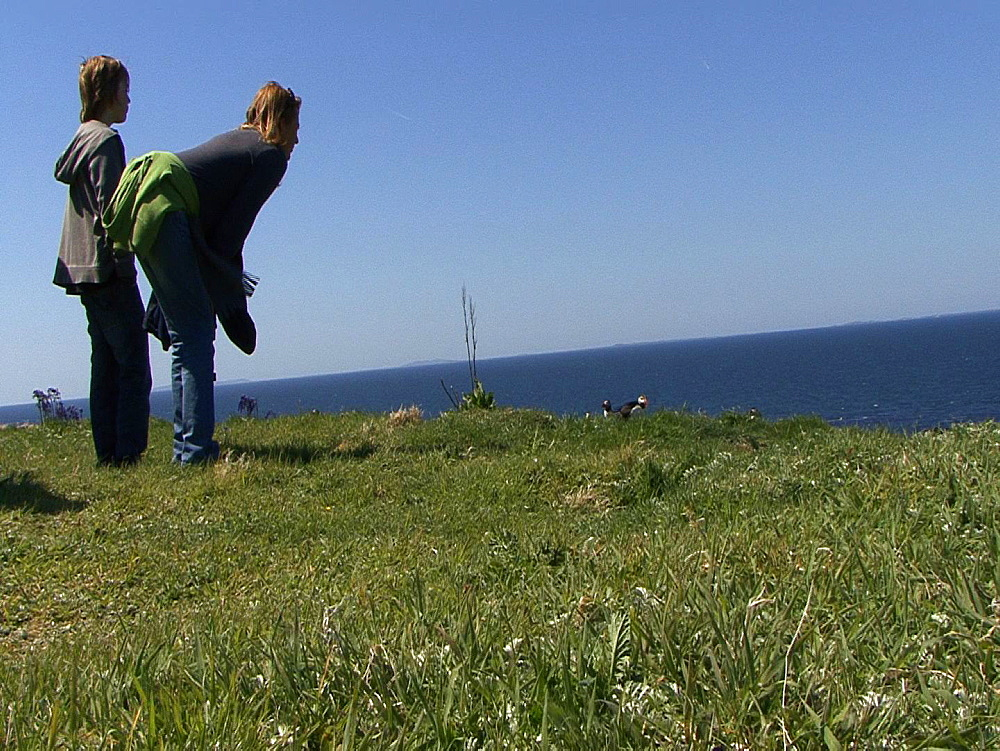 People view puffins (Fratercula arctica) at colony. Inner Hebrides. UK. 06/08/08n Scotland - 888-41