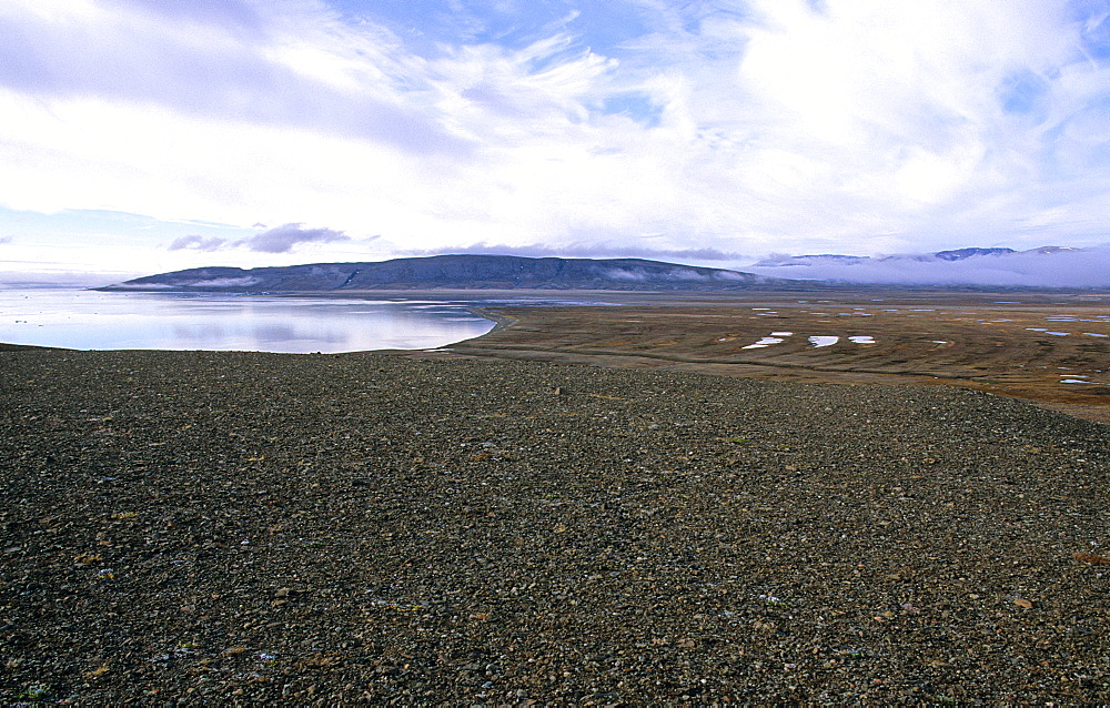 Strandflat coastlines due to isostatic rebounce. Myggbukta (Mosquito Bay) at the Hold With Hope peninsula, NE-Greenland. - 909-116