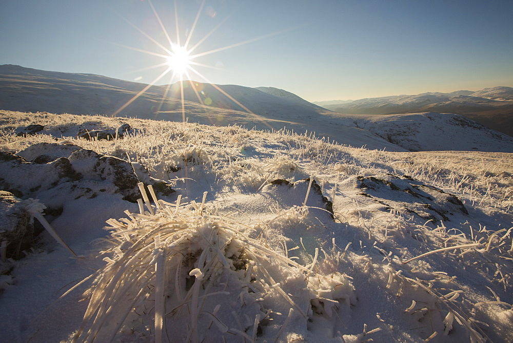 Looking across hoare frosted grass on the Helvellyn Range, Lake District, UK.