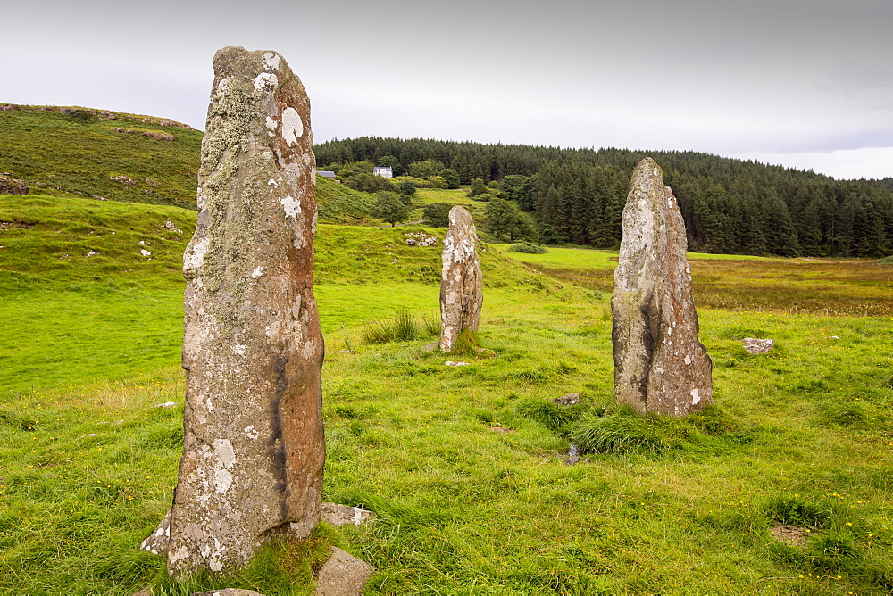 4000 year old Standing stones on the Glen Gorm estate near Tobermory, Isle of Mull, Scotland, UK.