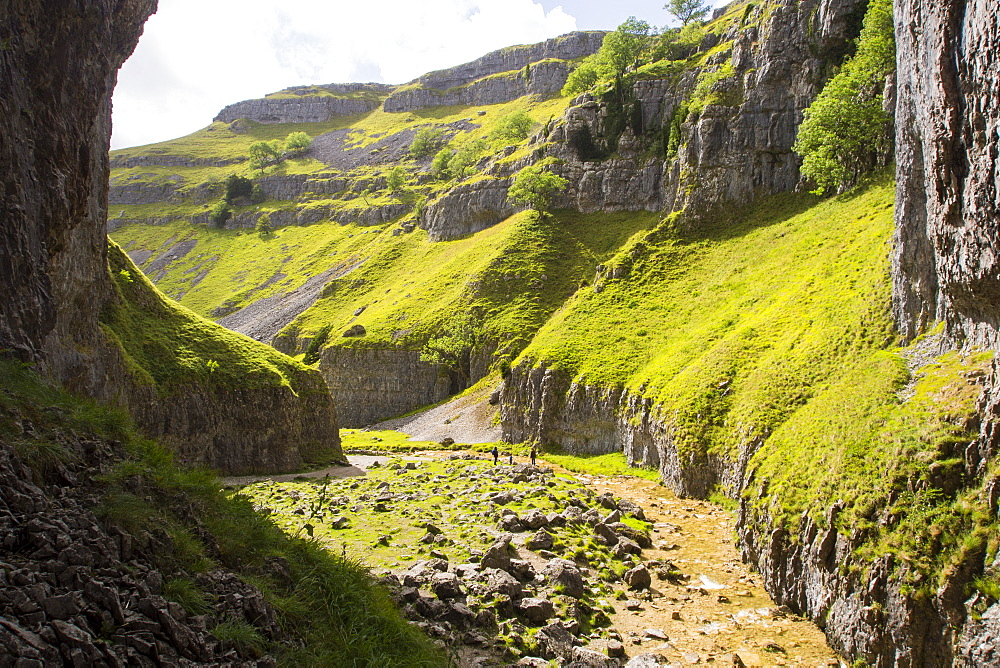 Goredale scar, an ancient collapsed cave near Malham in the Yorkshire Dales.
