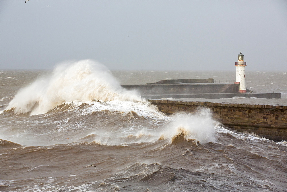 Whitehaven harbour being completely overwhelmed by huge waves during the January 2014 period of storm surge, high tides and storm force winds. The coastline took a battering, damaging the harbour wall and eroding a large section of coastal cliff. - 911-10753