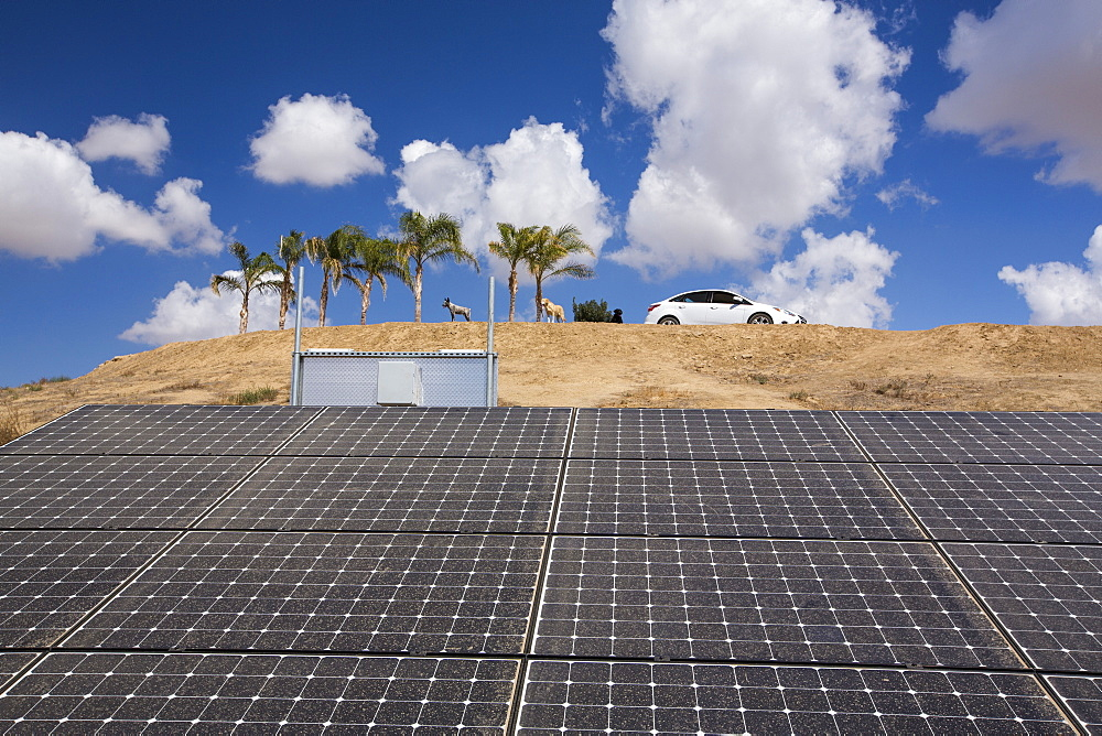 Solar panels in Bakersfield, California, USA. following the four year long drought, Bakersfield is now the driest city in the USA.