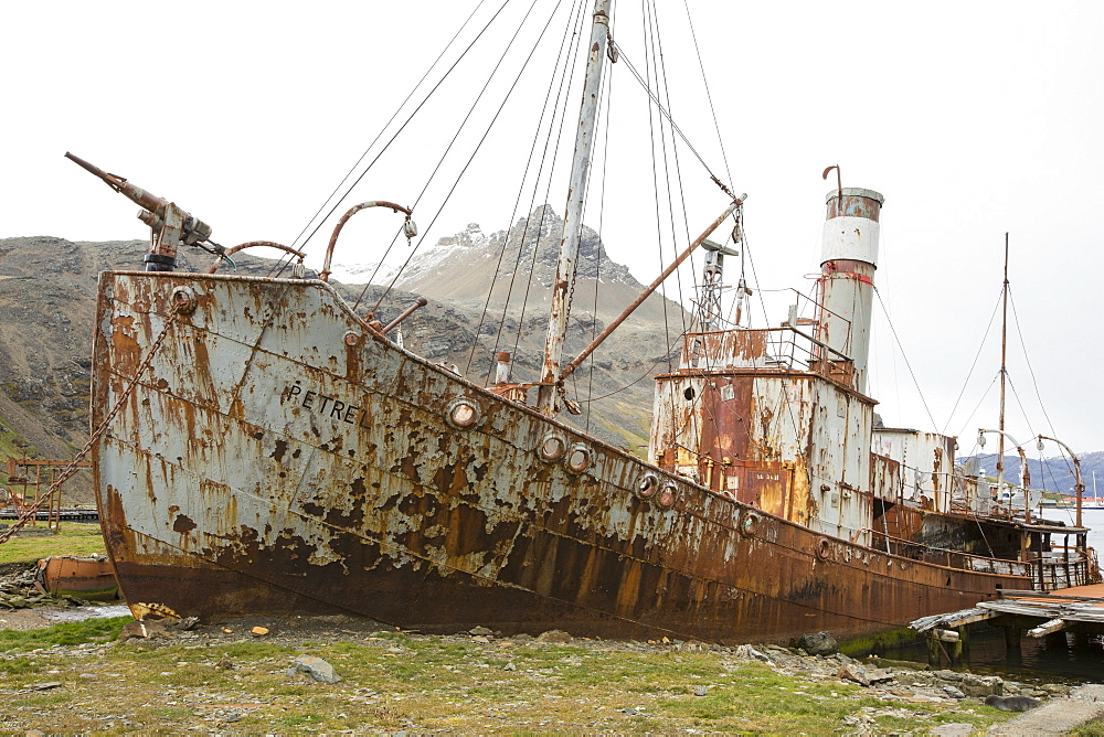 An abandoned whaling boat with a harpoon on its bow at the old whaling station at Grytviken on South Georgia. In its 58 years of operation, it handled 53,761 slaughtered whales, producing 455,000 tons of whale oil and 192,000 tons of whale meat.